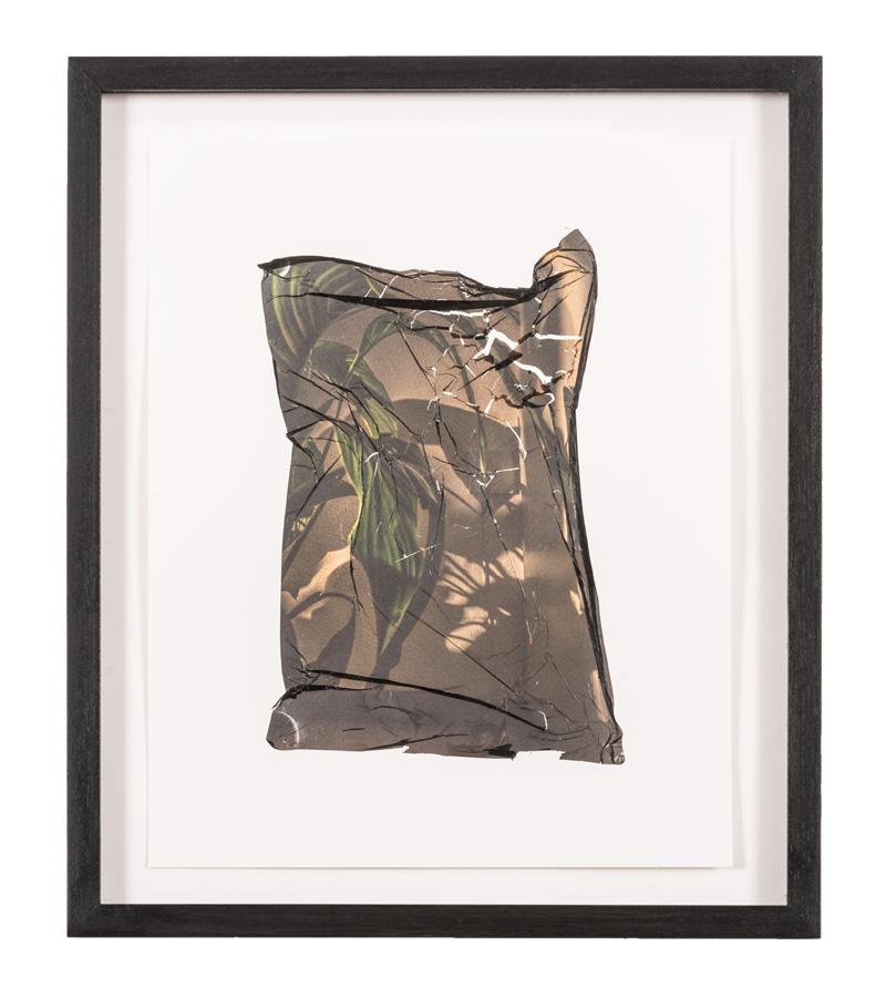 schaduwplant 38,5 x 48 cm