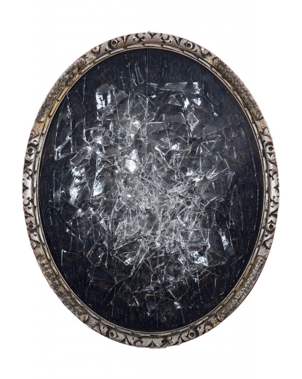 Broken ♂ 2017 26 x 32 cm